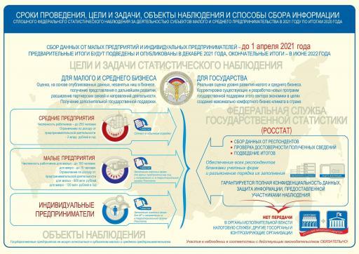 Инфографика МиСП 2020